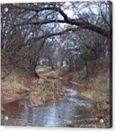 Rivers Bend Acrylic Print