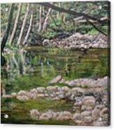Rivers Of The Big Sur Acrylic Print