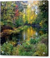 Riverscape In Autumn Acrylic Print
