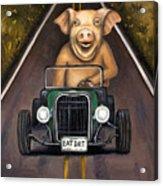 Road Hog Acrylic Print