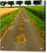 Road In Rural France Acrylic Print