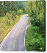 Road In The Black Hills Acrylic Print