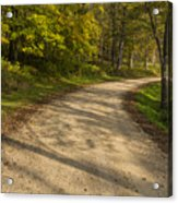 Road In Woods Autumn 3 A Acrylic Print