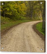 Road In Woods Autumn 3 B Acrylic Print