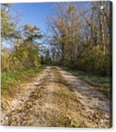 Road In Woods Autumn 4 A Acrylic Print