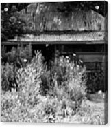 Road Side Stand Acrylic Print
