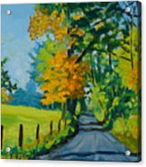 Road Through Barrenridge Acrylic Print