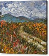 Road Through Colored Meadows Acrylic Print