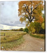 Road To Dads Place Acrylic Print by James Steele