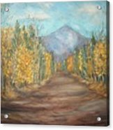 Road To Mountain Acrylic Print