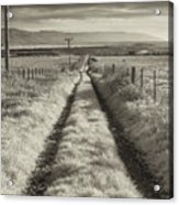 Road To Nowhere Acrylic Print