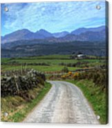 Road To Paradise Acrylic Print