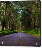 Road To Piopu Acrylic Print
