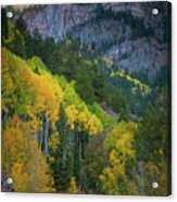 Road To Silver Mountain Acrylic Print