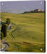 Road To Terrapille In Tuscany Acrylic Print