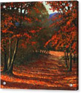 Road To The Clearing Acrylic Print