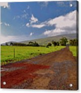 Road To The Clouds Acrylic Print