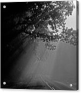 Road With Early Morning Fog Acrylic Print