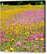Roadside Flower Garden Acrylic Print