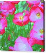 Roadside Flowers Acrylic Print