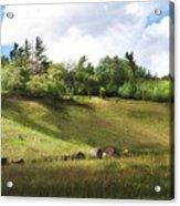 Roadside Hill Acrylic Print