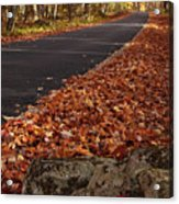 Roaring Fork Motor Trail In Autumn Acrylic Print by Andrew Soundarajan