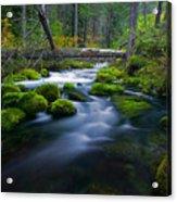 Roaring River Acrylic Print