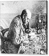 Robert Koch, German Bacteriologist Acrylic Print