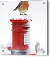 Robin And Postbox Acrylic Print