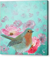 Robin In A Field Of Poppies Acrylic Print