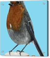 Robin On Cup Acrylic Print