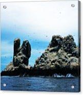 Roca Partida Acrylic Print