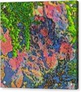 Rock And Shrub Abstract Bright Acrylic Print