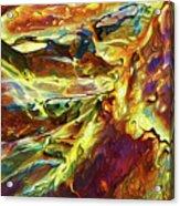 Rock Art 27 Acrylic Print by ABeautifulSky Photography