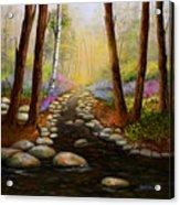 Rock Bottom Creek Acrylic Print