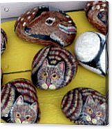 Rock Cats And Fawns Acrylic Print