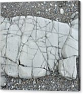 Rock Dog Acrylic Print