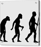 Rock Evolution Acrylic Print