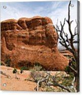 Rock Fin -- Arches National Park Acrylic Print