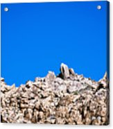 Rock Formations And Blue Sky Acrylic Print
