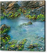 Rock Formations In The Sea, Bird Rock Acrylic Print