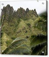 Rock Formations Seen Through Coconut Acrylic Print