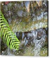 Rock Fountain Acrylic Print