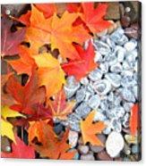 Rock Garden Autumn Leaves Acrylic Print