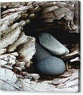 Rock Nest Acrylic Print