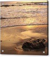 Rock On The Beach Acrylic Print