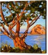 Rock Reflection - Morro Bay Acrylic Print