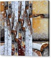 Rock Study 18 Square Acrylic Print