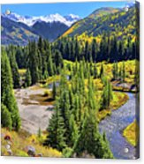Rockies And Aspens - Colorful Colorado - Telluride Acrylic Print