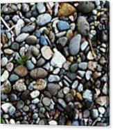 Rocks And Sticks On The Beach Acrylic Print